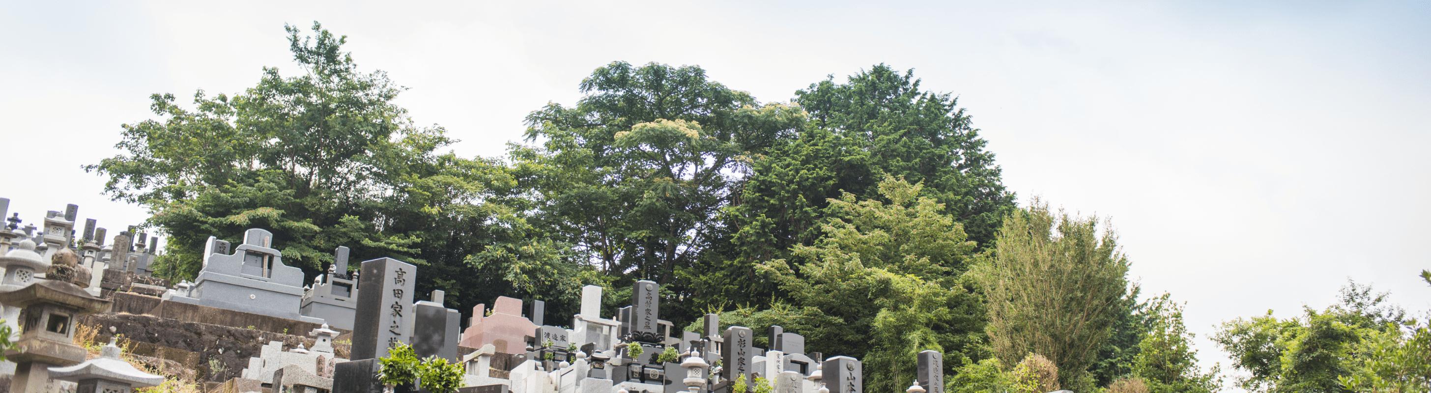 裾野光明寺の墓地